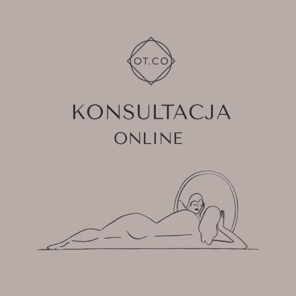 konsultacja online