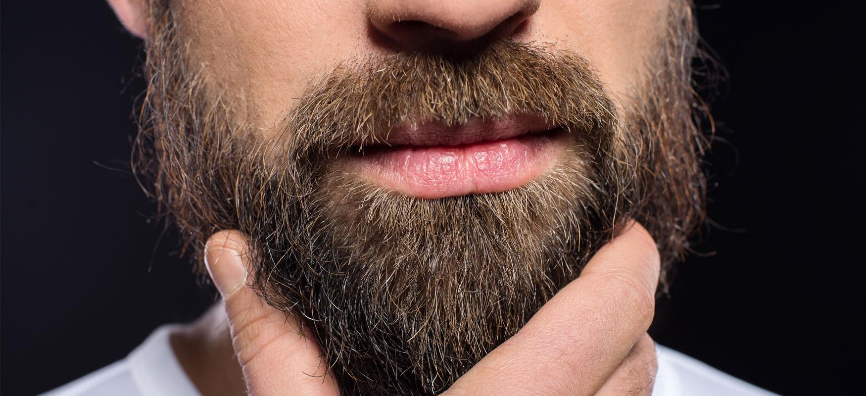 przeszczep brody zarostu